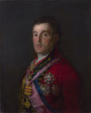 486px-Duke_of_Wellington_2.jpg